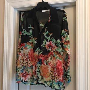 Sheer Susan Graver button up blouse